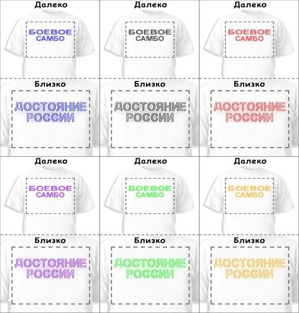 Футболка «Боевое самбо» «Достояние России»